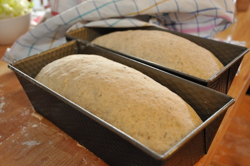Brödet jäser fint